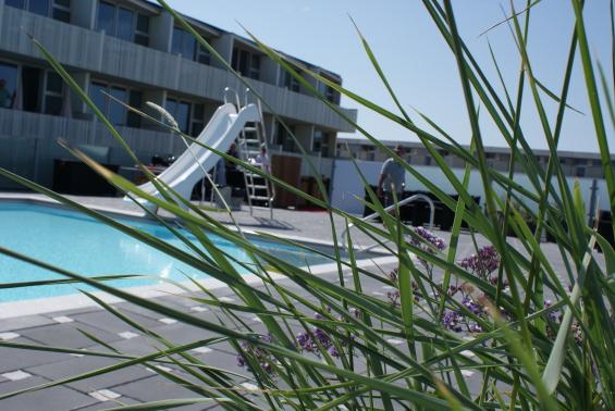 Udendørs pool Blokhus Feriecenter